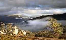 4 Andalusian Landscapes Montes Malaga