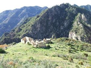 Abandoned Finca