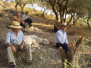 Cómpeta to Alfarnatejo Goats