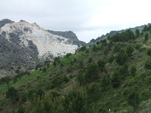 Jatar View