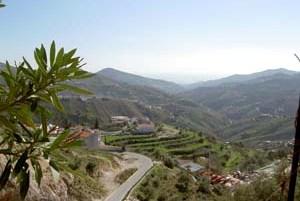 Casa Optima View 2
